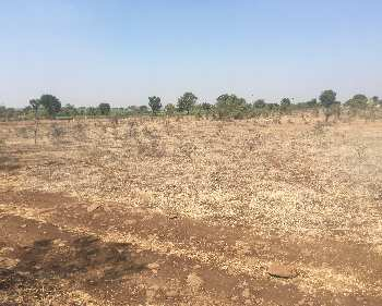 Agriculture Land For Sale In Ranjangaon, Pune