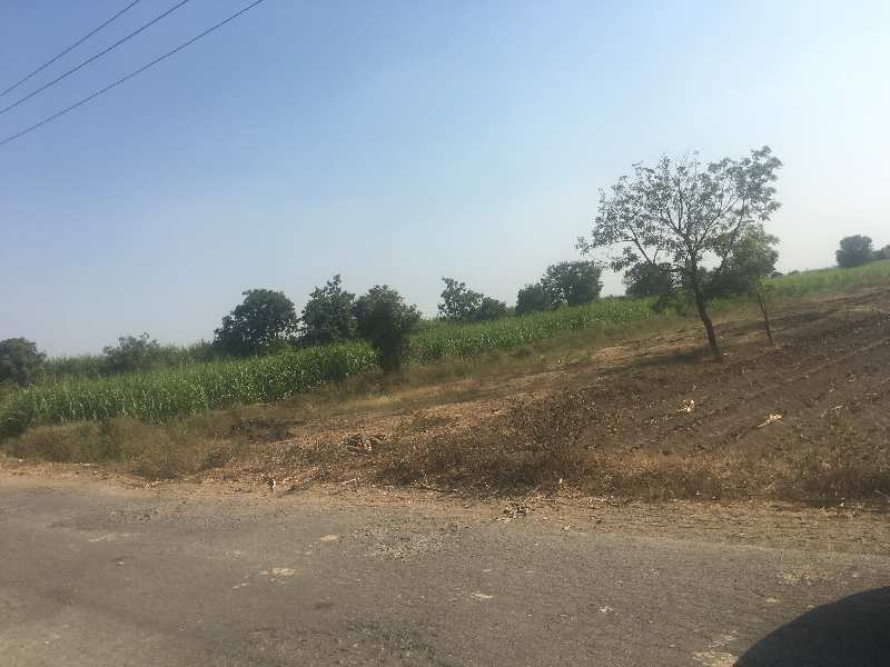 Agriculture Land For Sale In Talegaon Dhamdhere, Pune