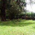 65 Cents Residential Land for Sale