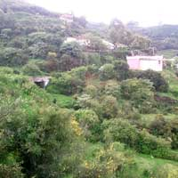 Residential Land / Plot for Sale at Kethi