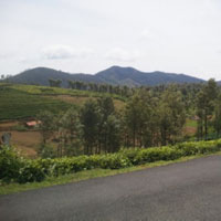 Residential land 21 cents for sale