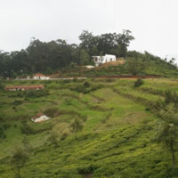 One Acre Residential Land available for sale in ooty