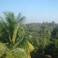 Farm House for Sale At R.n.kandigai, Uthiramerur Taluk, Kanchipuram Dist, Tamil Nadu
