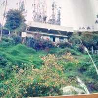 7.5 Cents Residential Land with Old house for sale in Ooty for Rs,30 lacks
