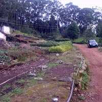 Residential land available for sale near Highfield estate, Coonoor