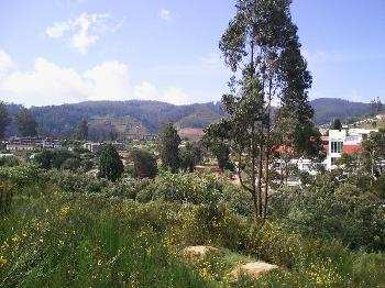 Independent House for Sale in Ooty