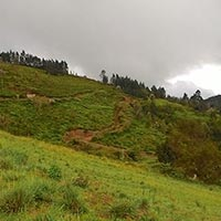 1 Acre Residential Land Available for Sale in Ketti, Coonoor