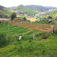 27 Cents Residential Land for Sale in Ooty