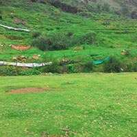 42 Cents Residential Plot Available for Sale in Ooty