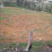Affordable Residential Plot for Sale in Ooty