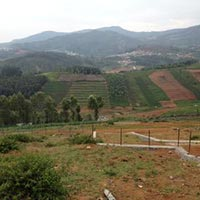 Affordable Residential Plot for Sale at Ooty