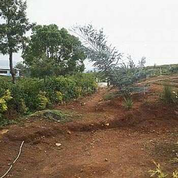 Residential Land For Sale In Coonoor, Ooty
