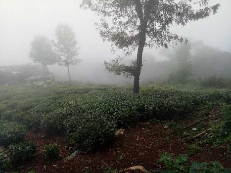 Residential Plot for Sale in Coonoor, Nilgiris