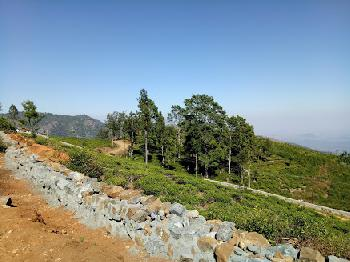 Sree Harshav Proudly present 25 cents Land for sale
