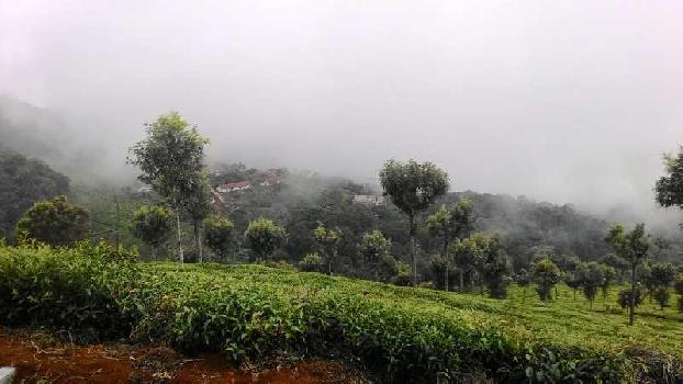 40 Cents land for sale in Coonoor