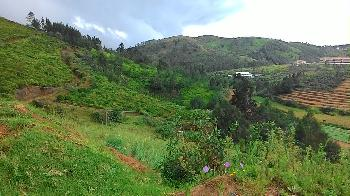 Residential Land with 114 Cents for sale in Ooty
