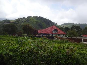 21 Cents land for sale in Coonoor