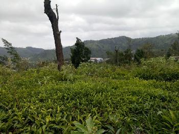 Residential Land for sale in Coonoor with 23 cents