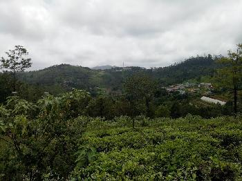 Residential Land for sale in Coonoor with 24 cents