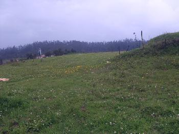 Residential Land for sale in Ooty with 31 cents