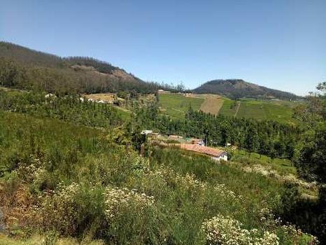 Residential Plot in Ketti, Ooty
