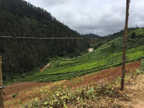 Agricultural plot sale in Ooty