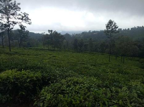 22 Cent Residential Plot for Sale in Coonoor, Nilgiris