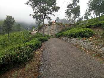 56 Cent Residential Plot for Sale in Coonoor, Nilgiris