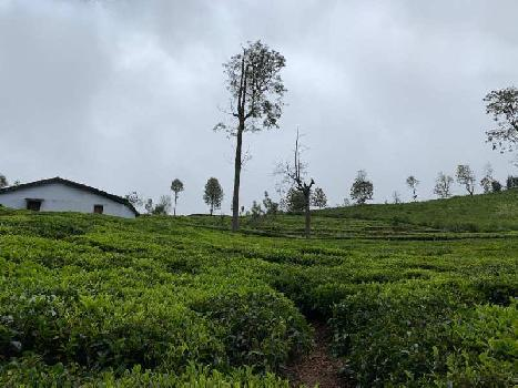 Agricultural plot