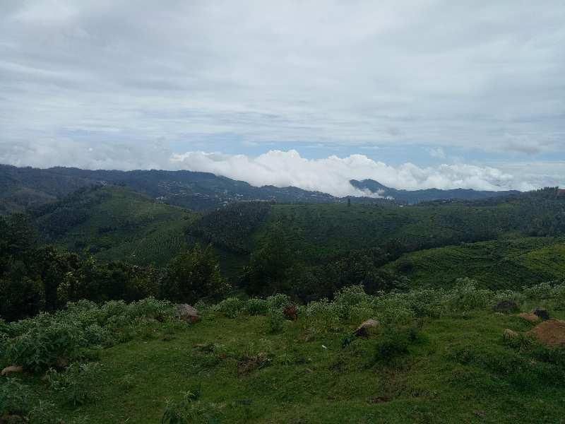 2.75 Acre Residential Plot for Sale in Ketti, Nilgiris
