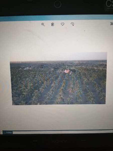 Agriculture Land For Sale In Chinna Dharapuram