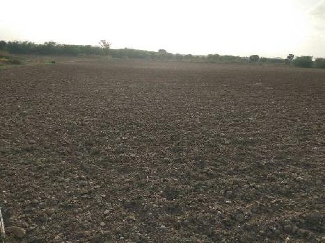 Agricultural Land For Sale In National Highway 44 Road, Kurnool