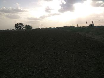 Agricultural Land For Sale In Kongana Padu Village, Kurnool