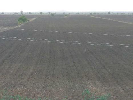 Agricultural Land For Sale In Allugundu Village, Kurnool