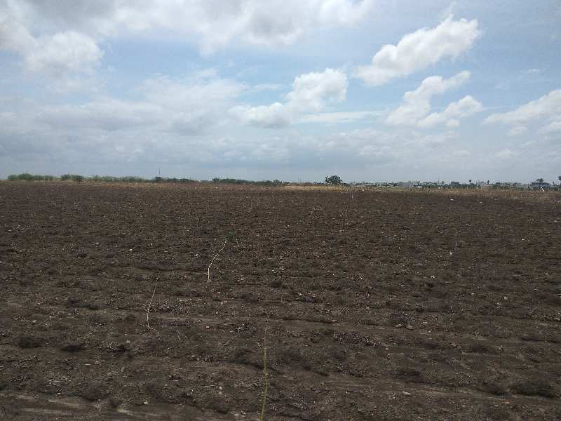 Agricultural/Farm Land for Sale in Orvakal, Kurnool
