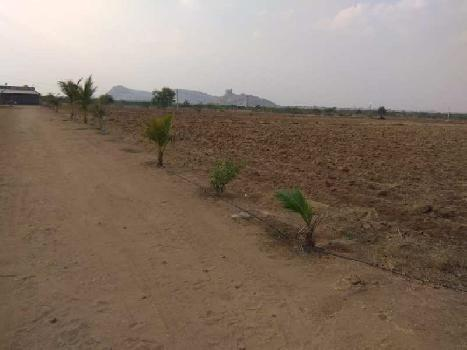 Agriculture Land For Sale In Kambadhuru Village , Mandal, Anantapur, Andhra Pradesh