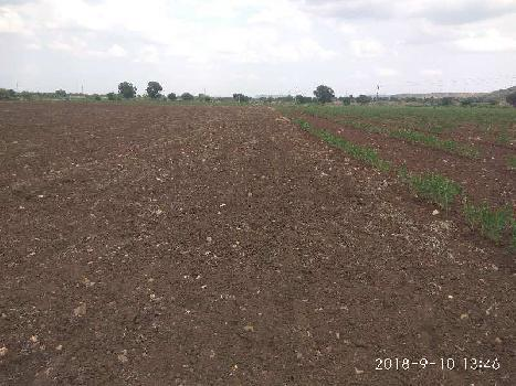 Agriculture Land For Sale In Ramayampet Road to Kalvakuntla, Telangana