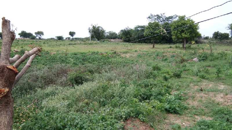 35 acres lands for sale (land at jogipet/Narayankahde)