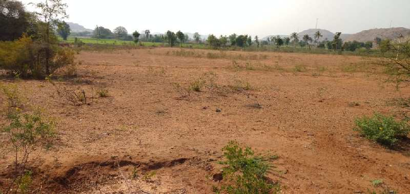 145 ACRES@ KANDOOR (2 KMS FROM TOLL PLAZA)
