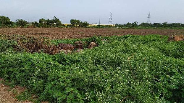 10Acres agro.land for sale