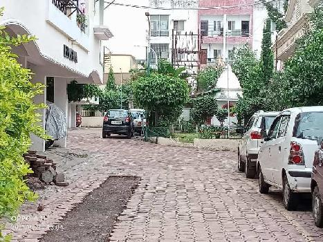 3 BHK Flats & Apartments for Rent in Gulmohar, Bhopal
