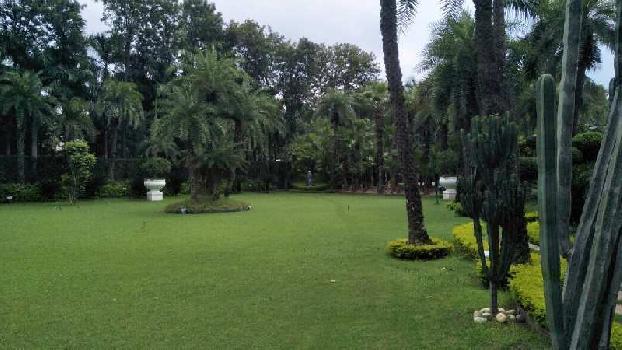 5 BHK Farm House for Sale in Kapashera, Delhi