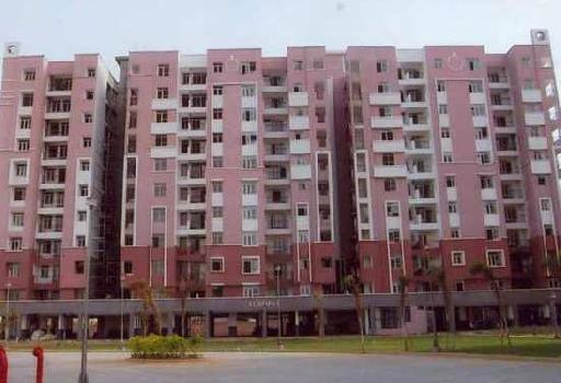 3 BHK Flat For Sale In Bhiwadi