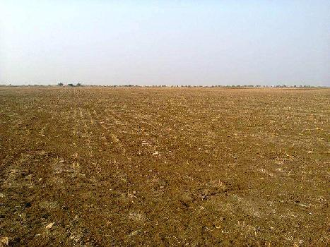 Land for Sale in Chattarpur, Delhi South