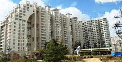 Apartment for Rent in Dda Flats Vasant Kunj