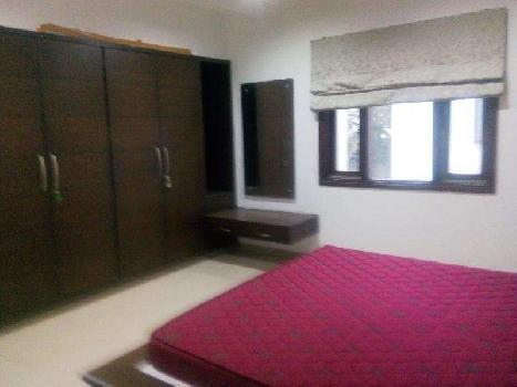 2500 Sq. Feet Penthouse for Rent in Alkapuri, Vadodara