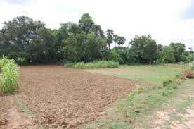 Residential Plot For Sale in Surat