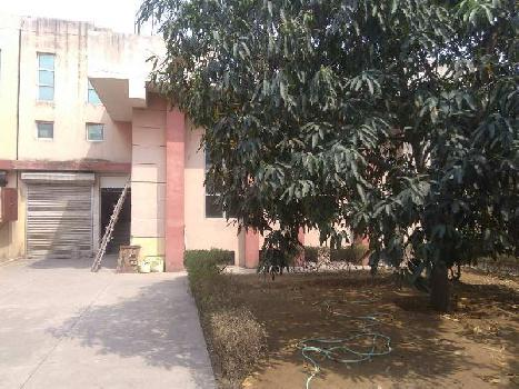 4500 Sq.ft. Factory / Industrial Building for Rent in Imt Manesar, Gurgaon