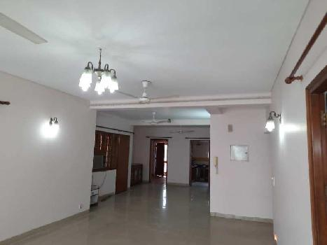 3 BHK Flats & Apartments for Rent in Green Park, Delhi