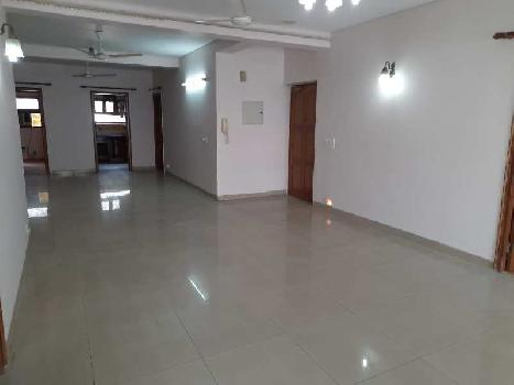 3 BHK Flats & Apartments for Rent in Green Park, Delhi
